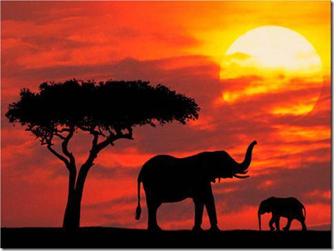 KenyaSafari