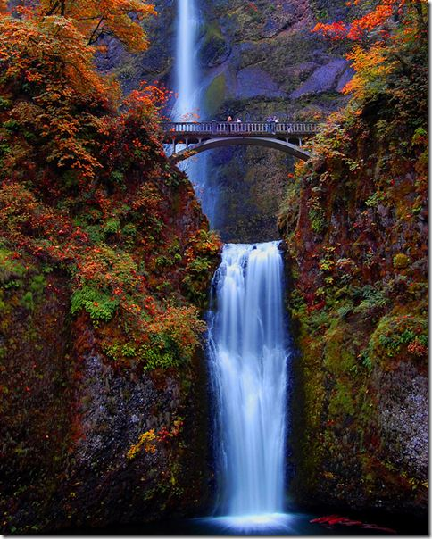 OregonFalls