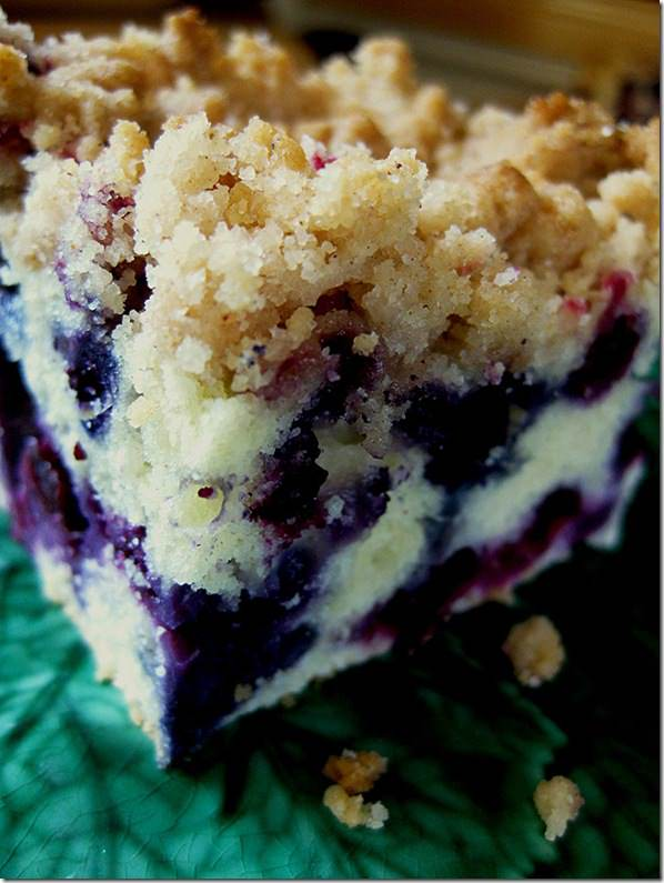 blueberrybuckle