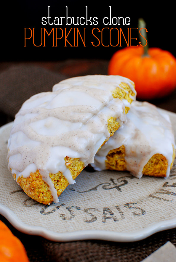 Starbucks Clone Pumpkin Scones - Iowa Girl Eats