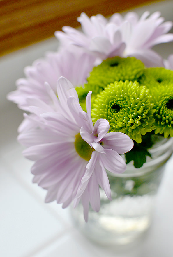 Flowers_01_mini