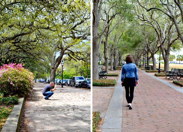 Charleston, SC trip | iowagirleats.com