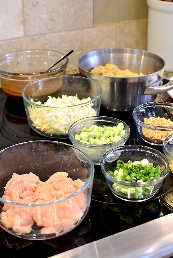 Thai-Peanut-Chicen-Quinoa-Bowls_iowagirleats_10_mini