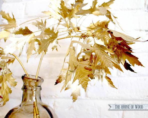 golden-leaves-closeup