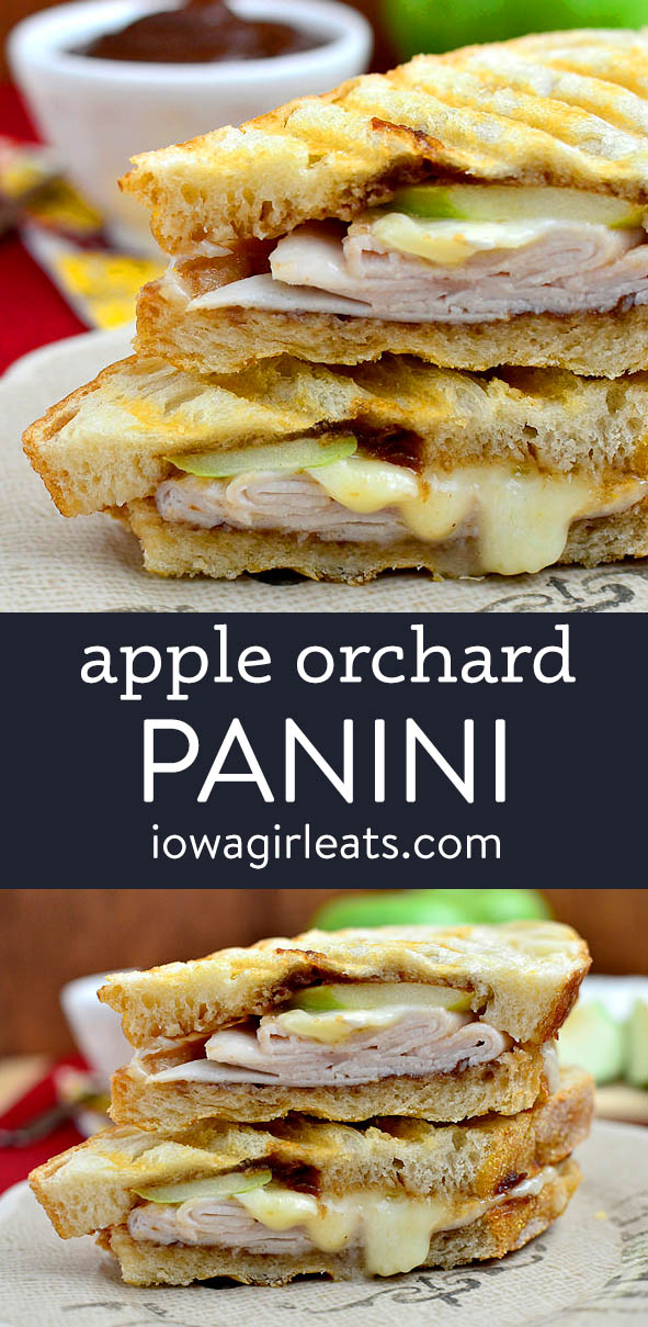 photo collage of apple orchard panini