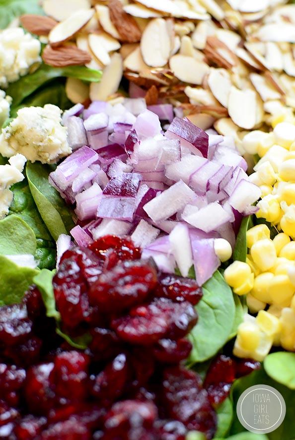 Summer-Spinach-Salad-with-Lemon-Poppyseed-Dressing-iowagirleats-14