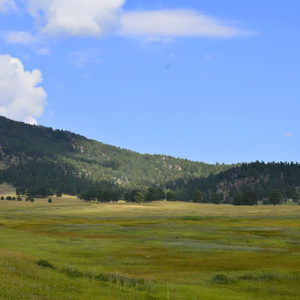 City Sights and Mountain Hikes in Colorado!