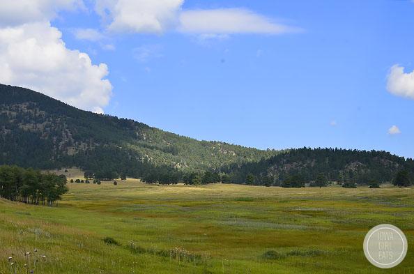 Elk-Meadow-Park-iowagirleats-02