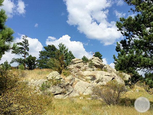 Elk-Meadow-Park-iowagirleats-05