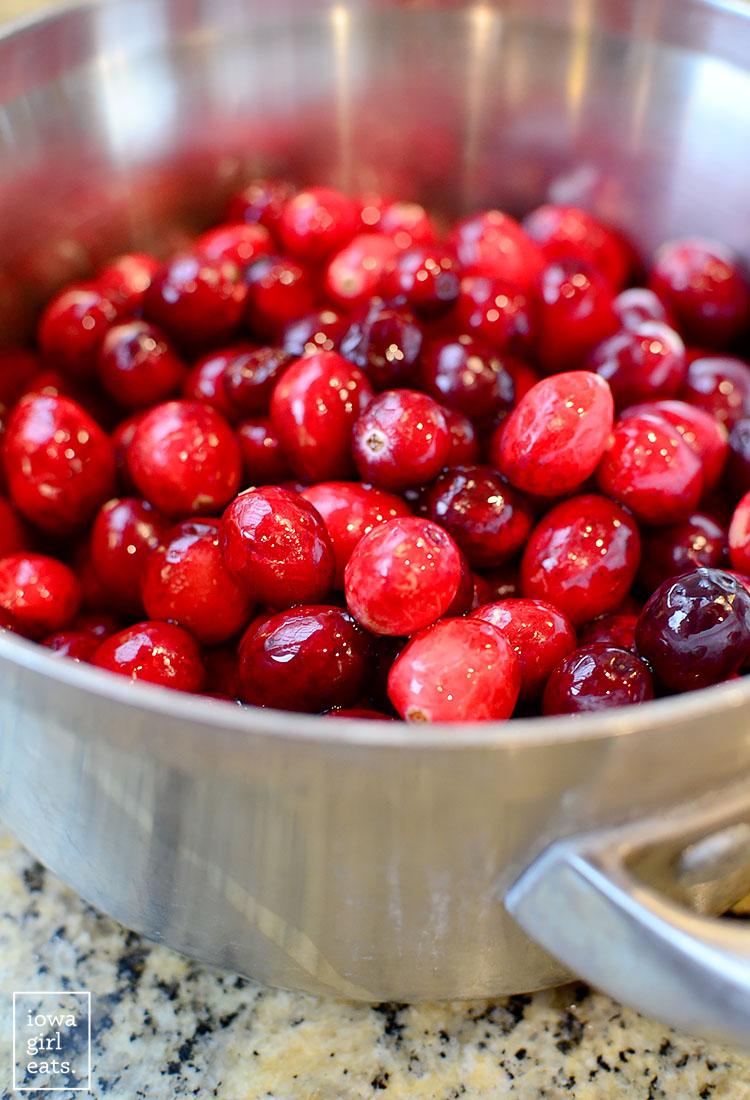 Roasted-Pork-Tenderloin-with-Cranberry-Pear-Sauce-iowagirleats-04