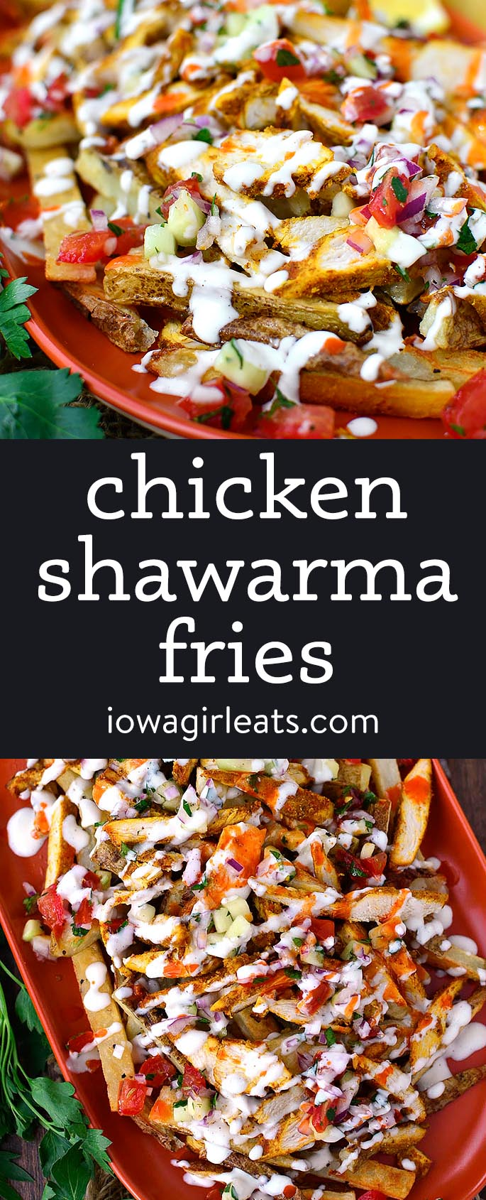 Photo collage of chicken shawarma fries