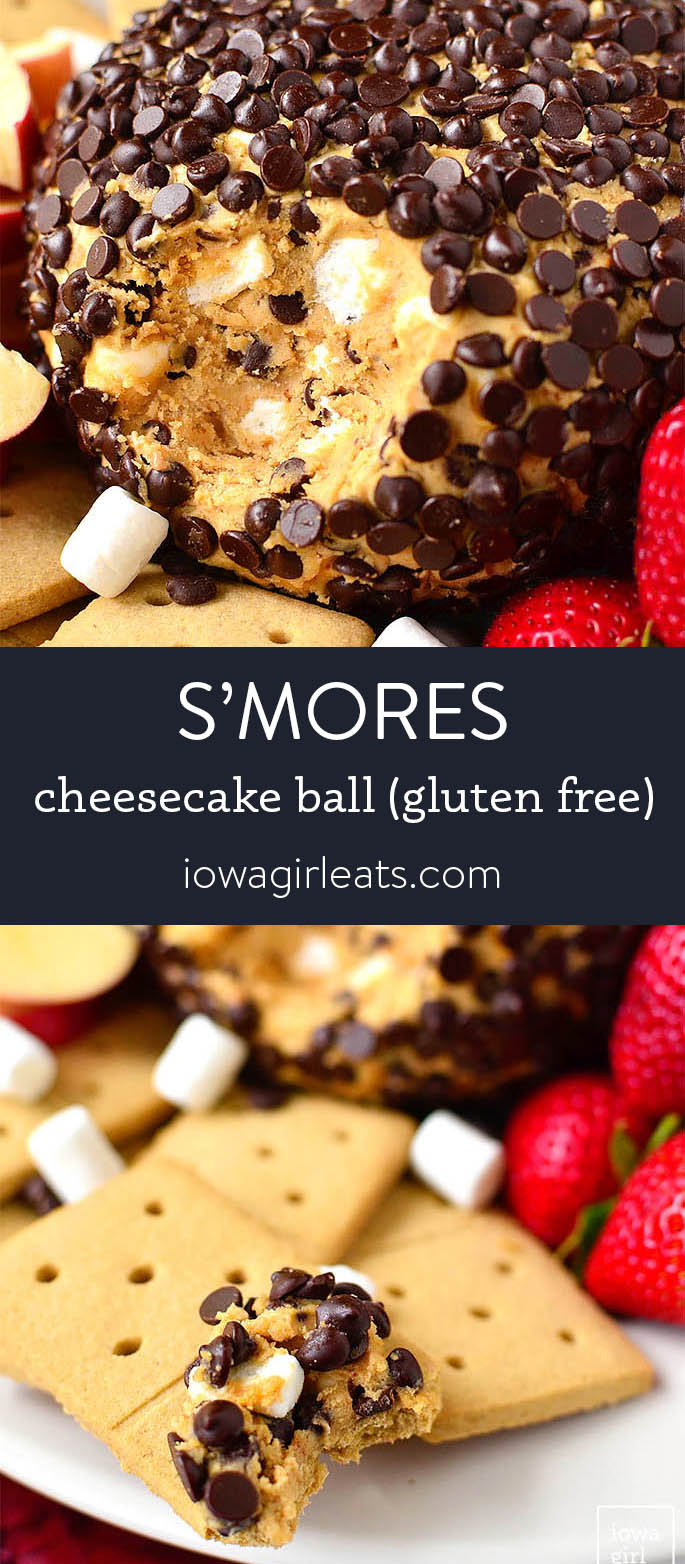 Photo collage of s'mores cheesecake ball