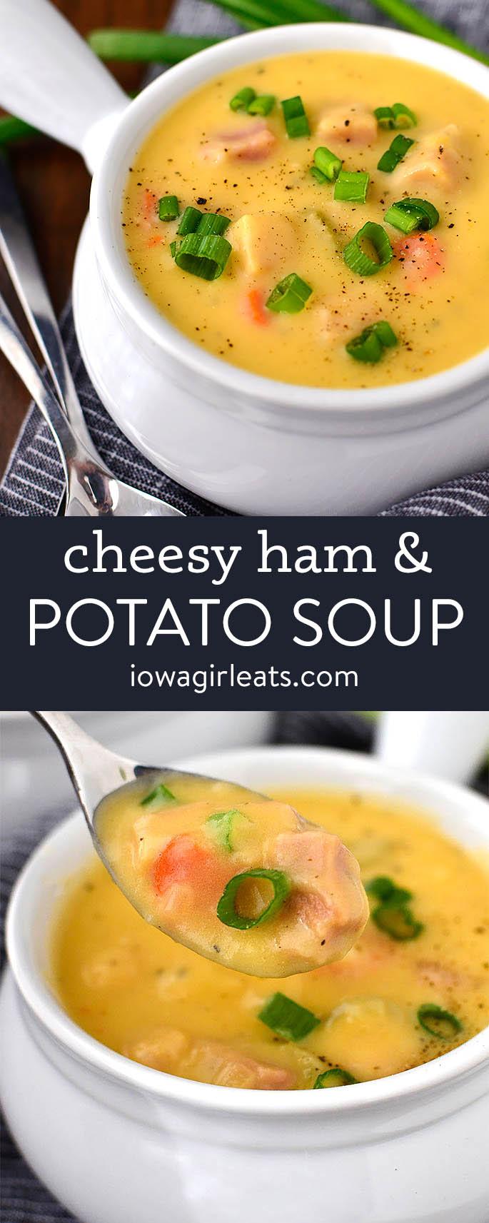 photo collage of cheesy ham and potato soup
