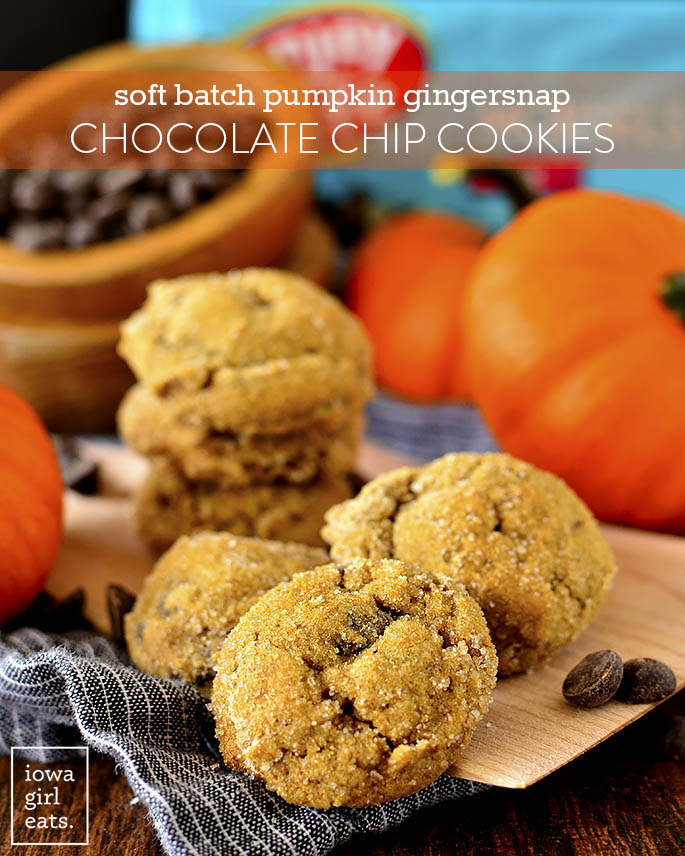 Plate of Soft Batch Pumpkin Gingersnap Chocolate Chip Cookies