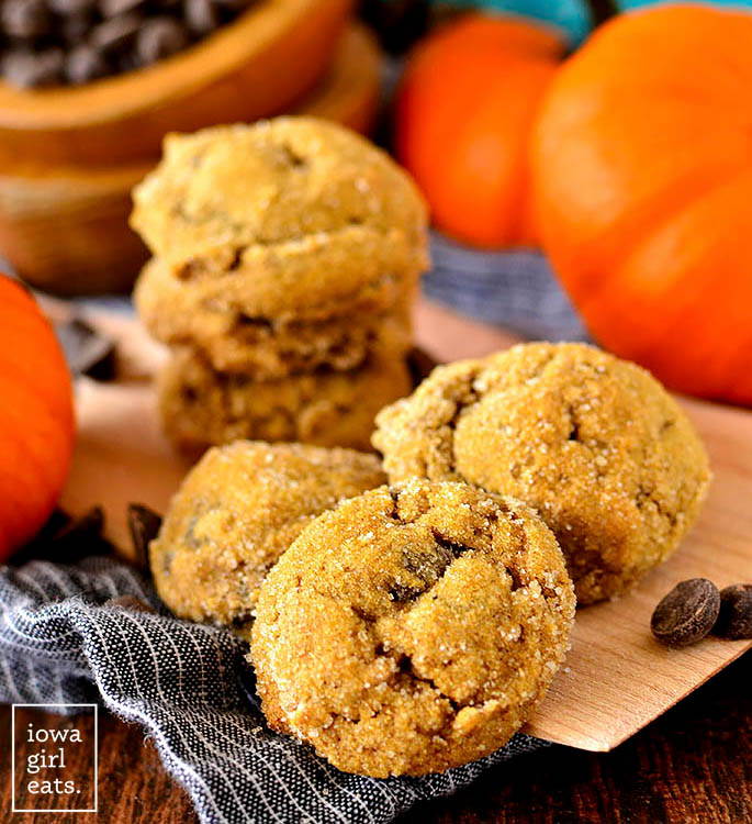 Soft batch pumpkin gingersnap chocolate chip cookies siting on a cookie scoop