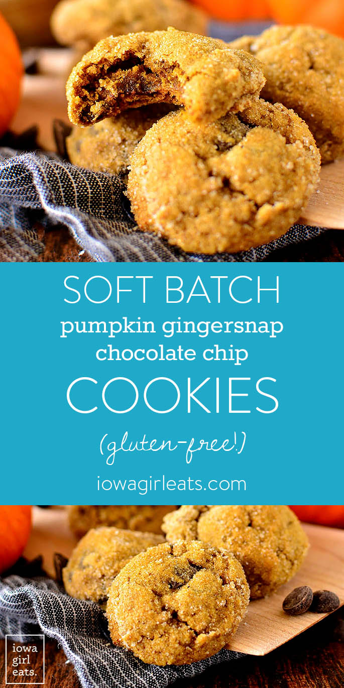 Photo collage of Soft Batch Pumpkin Gingersnap Chocolate Chip Cookies