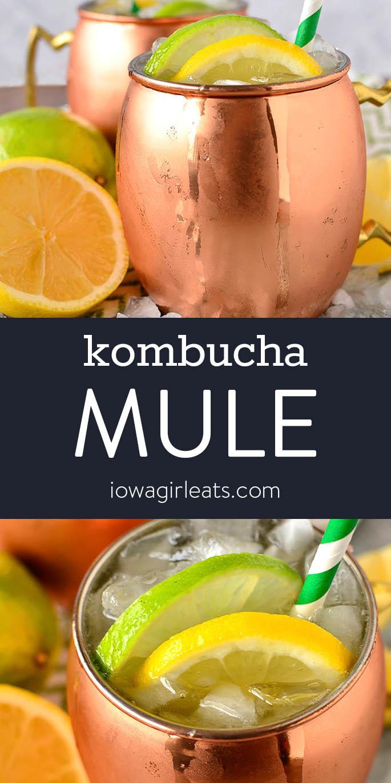Photo collage of kombucha mules