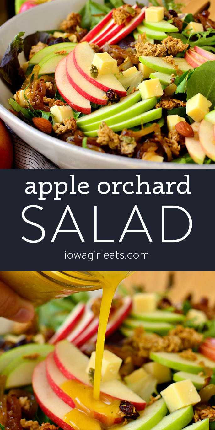 photo collage of apple orchard salad